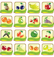 Set of art fruit icons vector image