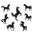 silhouettes of unicorns vector image vector image
