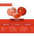 tomato health benefits vector image vector image