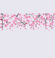 upper frame border with blooming cherry or sakura vector image vector image