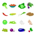 Vegetables photo realistic set vector image vector image