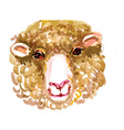 Artistic sheep design vector image vector image