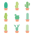 Cactus abstract collection in vector image vector image