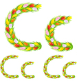 font type letter C made from flower tulip vector image