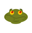 frog surprised emoji toad avatar astonished vector image