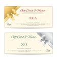 Gift Card Voucher Gold Silver ribbon vector image vector image