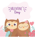 happy valentines day cute couple owls hearts love vector image