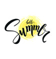 hello summer handwritten text brush pen vector image vector image