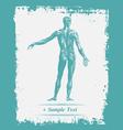 Paper art Human Body vector image vector image
