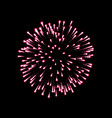 firework pink bursting isolated black background vector image vector image