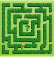 green grass maze on green background vector image