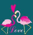 love birds flamingos vector image vector image