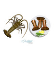 meat spiny lobster with rosemary and lemon on the vector image vector image