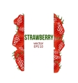 Strawberry border and place for your text vector image