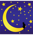 The Cat in front of a starry sky vector image vector image