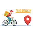 bicycle with delivery man fast courier with vector image