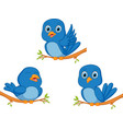 blue bird cartoon vector image vector image