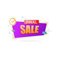 final sale banner design vector image