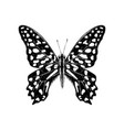 hand drawn tailed jay butterfly - graphium vector image vector image