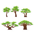 oak trees vector image vector image
