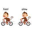 opposite words fast and slow vector image vector image