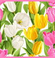 seamless pattern color tulips vector image vector image