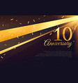 10th anniversary celebration card template vector image