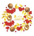 Autumn wreath walnuts and mountain ash