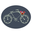 Bicycle for ladies vector image