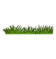 cartoon green grass vector image vector image
