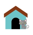 Cat breed animal mammal colored house vector image
