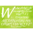 Modern alphabet green background vector image vector image