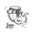 apricot jam glass jar drawing fruit jell vector image