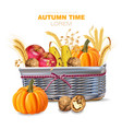 autumn basket withpumpkins and fruits vector image vector image