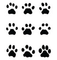 black footprints leopard vector image