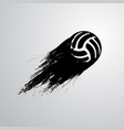 ink blots volleyball ball vector image vector image