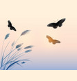 landscape with grass sunrise sky and butterflies vector image
