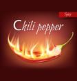 realistic half pod of chili pepper in flame vector image