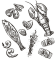 Seafood selection vector image