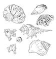 set hand drawn seashells vector image