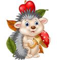 Adorable baby hedgehog holding mushroom vector image vector image
