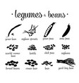 black and white legumes beans set vector image vector image
