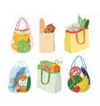 cartoon eco reusable paper or plastic bags vector image