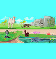 colorful asian animals horizontal banners vector image