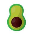 half avocado fresh nutrition icon vector image