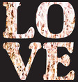 love word typography gold glitter isolated on vector image vector image