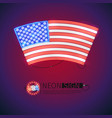neon sign arced usa flag vector image