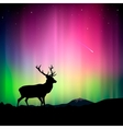 Northern lights with a deer in the foreground vector | Price: 1 Credit (USD $1)