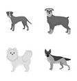 retriever terrier pomeranian and other web icon vector image vector image