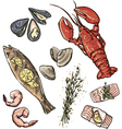 Seafood selection vector image